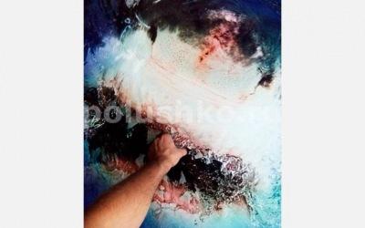 Рука акула пол